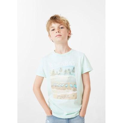 Tシャツ .-- BAHAMAS (グリーン)
