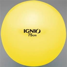 イグニオ Ignio フィットネスボール IG Fボール75 YL