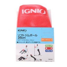 イグニオ IGNIO バランストレーニング IG Sジムボール26PK