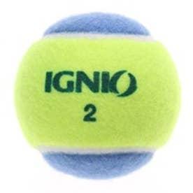 イグニオ IGNIO 硬式ボール IG-2TB0036BL/YL