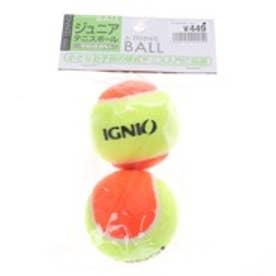 イグニオ IGNIO 硬式ボール IG-2TB4024