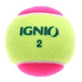 イグニオ IGNIO 硬式ボール IG-2TB0036PK/YL