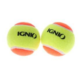 イグニオ IGNIO 硬式テニス ノンプレッシャーボール 2015020907