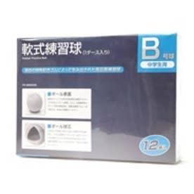 ジャパーナ Japana 軟式ボール PB-8BB0054Bダース