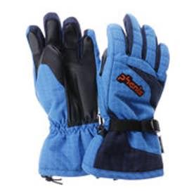 フェニックス PHENIX メンズ スキー グローブ Demonstration  Boy's Gloves PS7G8GL82