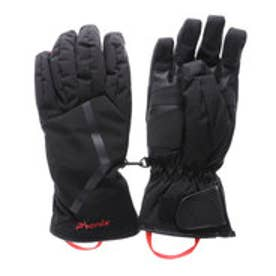 フェニックス PHENIX メンズ スキー グローブ DELTA Grant Gloves PS778GL33