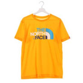 ザ ノース フェイス THE NORTH FACE ユニセックス トレッキング 半袖Tシャツ S/S COLORFUL LG T NT31621