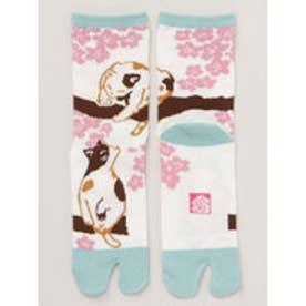 【カヤ】桜と猫 足袋くつ下23~25cm ホワイト×ピンク