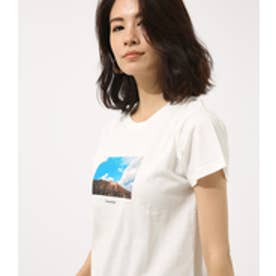 【AZUL BY MOUSSY】HOLLYWOOD TEE WHT