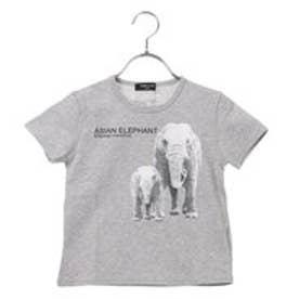 コムサイズム COMME CA ISM アニマルプリント半袖Tシャツ (グレー)