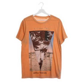 ゲス GUESS S/S PALM DESERT CREW TEE (HONEY DEW MULTI)