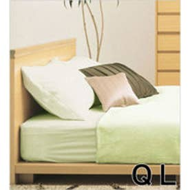 IDC OTSUKA/大塚家具 マットレスカバー フレビー クイーンロング(QL) グリーン (グリーン)【返品不可商品】