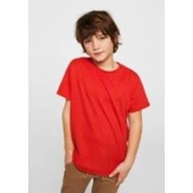 Tシャツ .-- BASIC (レッド)