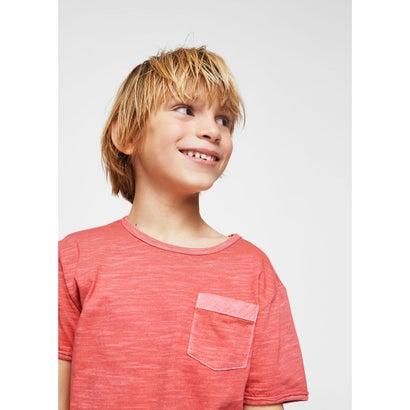 Tシャツ .-- BENJAMIN (レッド)