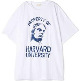 HARVARD Tシャツ ホワイト1