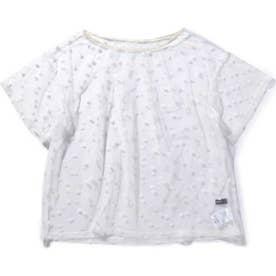 ドット柄シアーTシャツ WHITE MID1