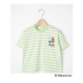 【90-120cm】【ミッフィー】ボーダーTシャツ (ライトグリーン(321))