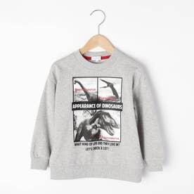 【100-150cm】恐竜プリントトレーナー (グレー)