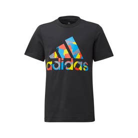 LEGO クラシックス グラフィック半袖Tシャツ/ LEGO Classics Graphic T-Shirt (ブラック)