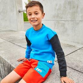 LEGO ブロック スウェット / LEGO Bricks Sweatshirt (ブルー)