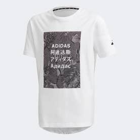 アスレティクス パック 長袖 Tシャツ / Athletics Pack Tee (ホワイト)