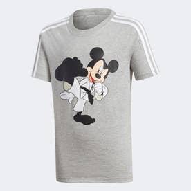 空手 半袖Tシャツ / Karate Tee (グレー)