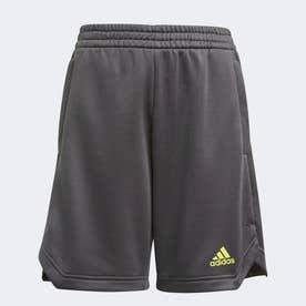 XFG AEROREADY PRIMEBLUE ショーツ / XFG AEROREADY Primeblue Shorts (グレー)