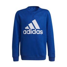 エッセンシャルズ スウェット / Essentials Sweatshirt (ブルー)