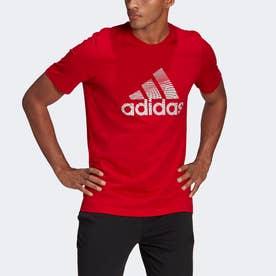 エクストリュ-ジョン モーション パフプリント ロゴ グラフィック 半袖Tシャツ / Extrusion Motion Puff-Print Logo Graphic Tee