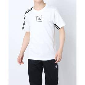メンズ 半袖Tシャツ MAACTシャツ FL3605 (ホワイト)