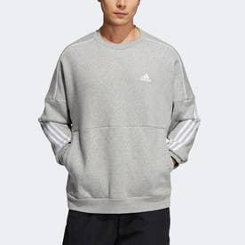 スポーツウェア スウェットシャツ (グレー)