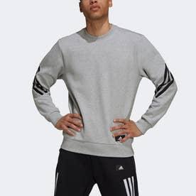 スポーツウェア フューチャー アイコン スリーストライプス スウェットシャツ (グレー)
