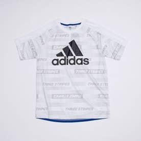 半袖機能Tシャツ YBSPORTSAOPTEE GP0753 (ホワイト)