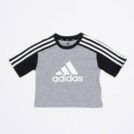 半袖Tシャツ YGCBTEE GN3955 (グレー)