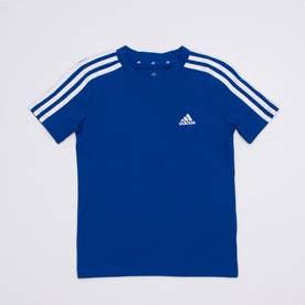 半袖Tシャツ BESS3ストライプスTシャツ GN4000 (ブルー)