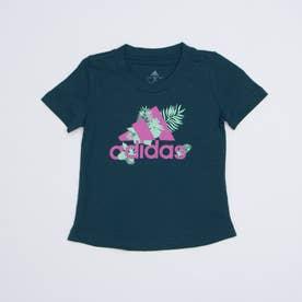 半袖Tシャツ YGTROPICALBOSTEE GJ6516 (ブルー)