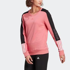 エッセンシャルズ ロゴ カラーブロック スウェット / Essentials Logo Colorblock Sweatshirt (ピンク)