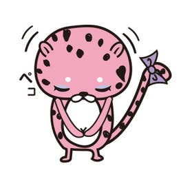 Lace ソフト 超盛ブラ(R) 単品ブラジャー【返品不可商品】 (GR72-グリーン×ブラック)