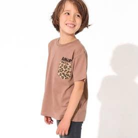 制菌アニマルポケットビッグTシャツ(モカ)