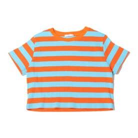 ボーダーリブミニTシャツ (BLUE)