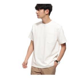 【WEB限定】MADE IN JAPAN /SUKENAI 白Tシャツ (オフホワイト)