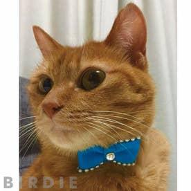 CATプチパールリボンカラー 猫用首輪 【返品不可商品】 (ブルー)