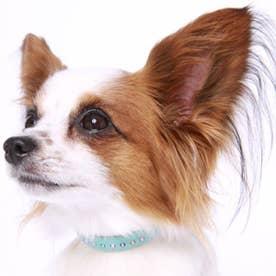 パールビーズカラー 21 小型犬・猫用革首輪 (ブルー)【返品不可商品】