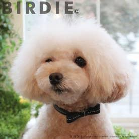 リボンステッチカラー 25 小型犬・猫用革首輪 (ブラック)【返品不可商品】