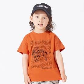 3柄ダイナソーロゴTシャツ (オレンジ)
