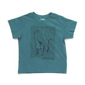 3柄ダイナソーロゴTシャツ (エメラルドグリーン)
