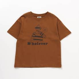 6柄5分袖Tシャツ (キャメル)