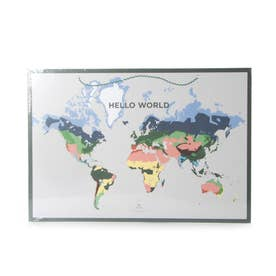World Map (DAMY)