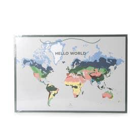 World Map (DAMY)