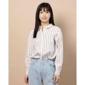 100/2ブロード無地・ストライプBIGシャツ (IVORY)